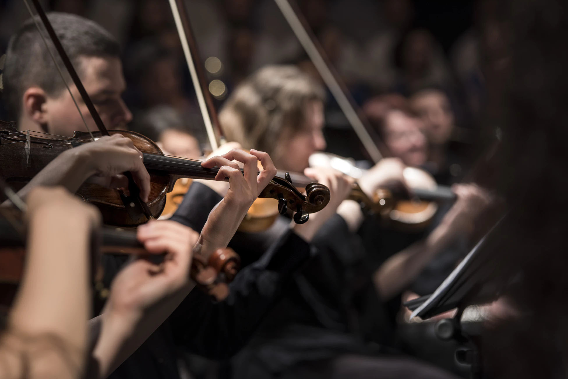 Cello festival Viva Cello dedicated to Rostropovich and Boccherini